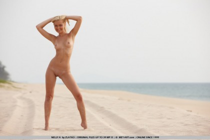 met art nude nelly